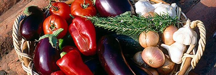 La dieta mediterránea en el niño