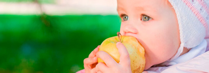 ¿Qué come un bebé de los 6 a los 12 meses?