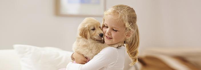 ¿Qué hacer si tu hijo quiere una mascota y tú no?
